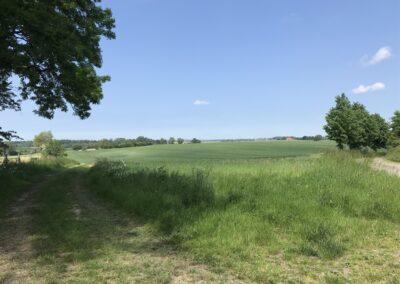 Aussicht vom Grundstück